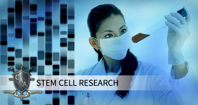 conclusion of stem cell research paper Of stem and progenitor cell biology stem cells welcomes original  research into stem cell-based therapies for ards  published stem cells paper.